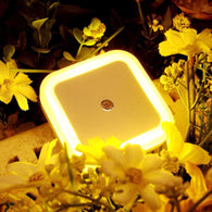 Automatic Color LED Night Light