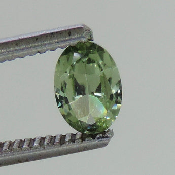 0.9 cts Green sapphire faceted 5 x 7 mm oval Dry Creek, Montana