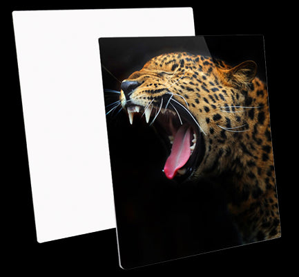Metal Photo Panels HD Gloss - Square (50cm)