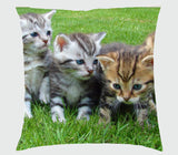 Pet - Square Cushion (Personalise it, Back and Front)