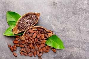 Raw Cacao Nibs Are Useful Against Coronavirus 2019-nCoV