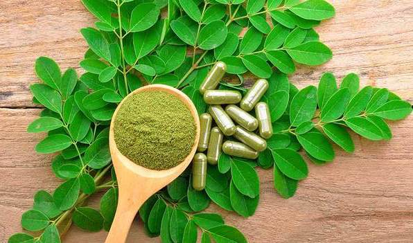 Keep healthy this Winter with Moringa – Tree of Life