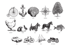 personalised wedding guest book, cover illustrations, penny farthing, anchor, shell, compass, tree, chicken, rabbit, dog, horse, fish, car, bicycle, boat, motorbike