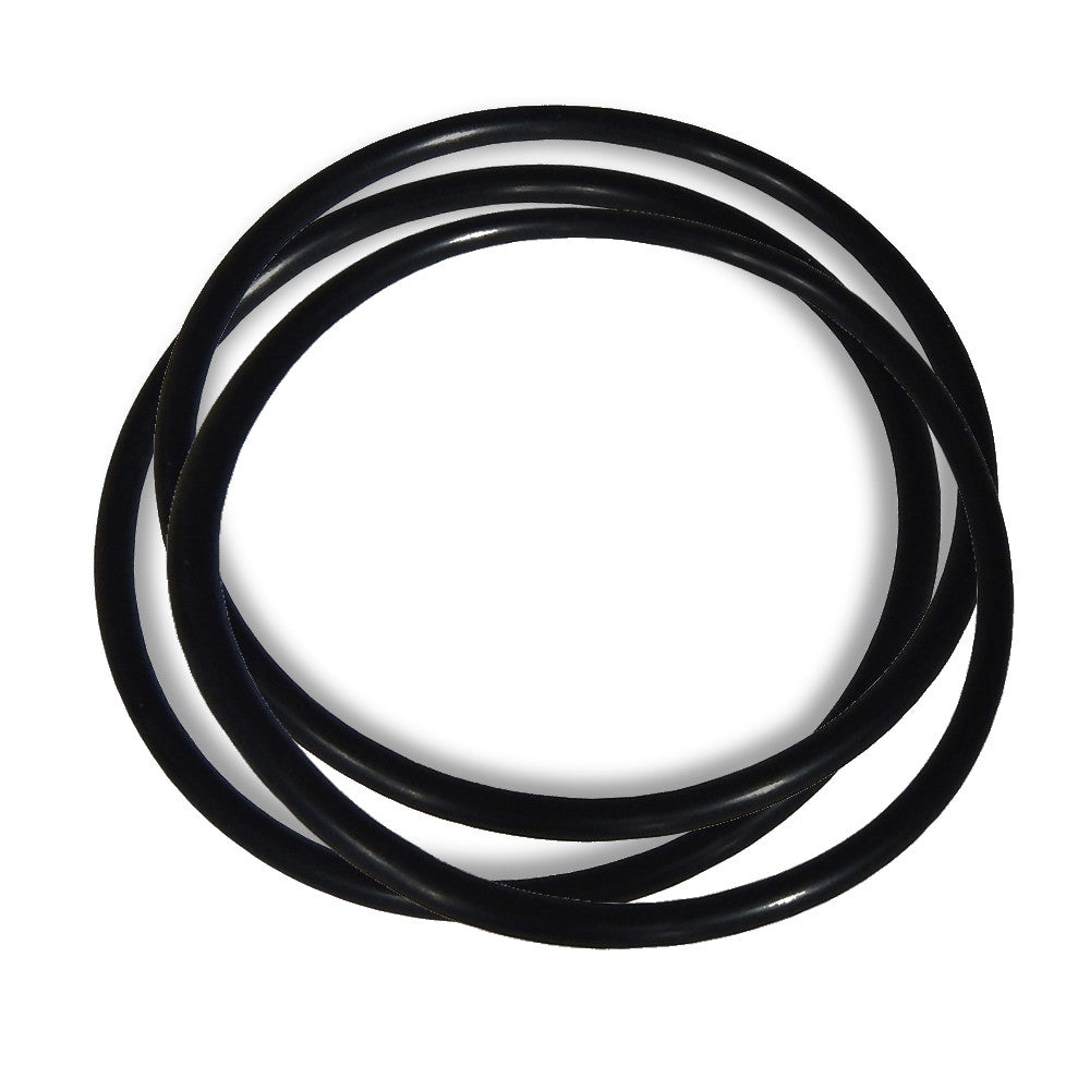 Replacement O-Ring Seals for Track-It Pressure/Temp without Display - Monarch Instrument