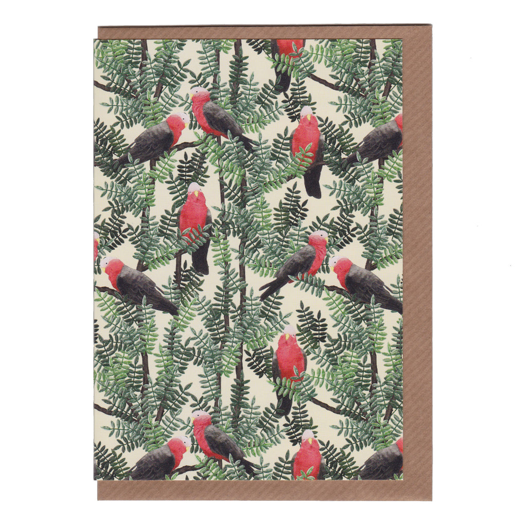Red Galah - Greetings Card