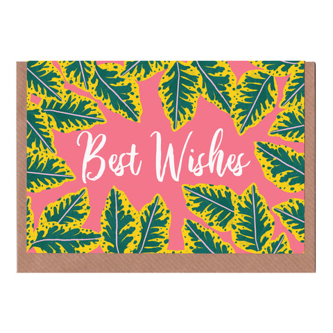 Best Wishes - Pink Calathea - Greetings Card