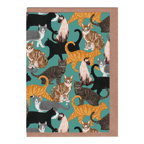 Cats - Greetings Card