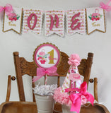 FLAMINGO - PINK AND GOLD - 3 pc - SMASH CAKE BIRTHDAY PARTY PACKAGE
