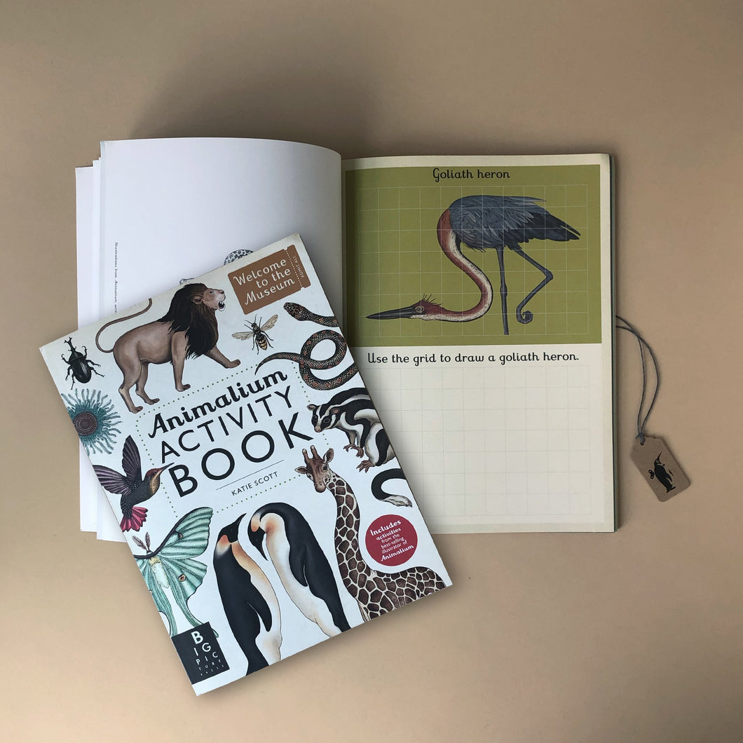 animalium-activity-book-with-art-by-katie-scott-goliath-heron-drawing-page