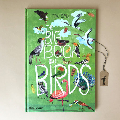 Big Book of Birds - Books (Children's) - pucciManuli