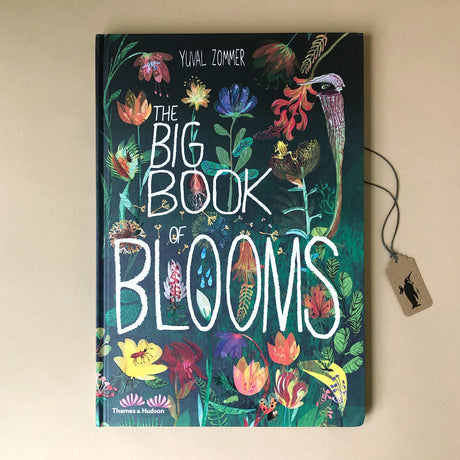 Big Book of Blooms - Books (Children's) - pucciManuli