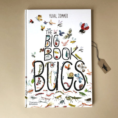 Big Book of Bugs - Books (Children's) - pucciManuli