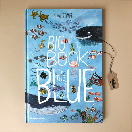 Big Book of the Big Blue - Books (Children's) - pucciManuli