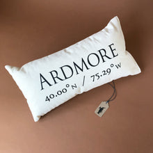 Load image into Gallery viewer, Celebrating Community Pillow | Ardmore - Pillows - pucciManuli