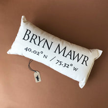 Load image into Gallery viewer, Celebrating Community Pillow | Bryn-Mawr - Pillows - pucciManuli