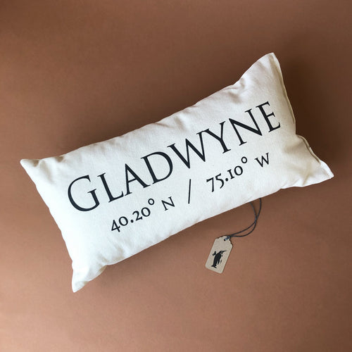 Celebrating Community Pillow | Gladwyne - Pillows - pucciManuli