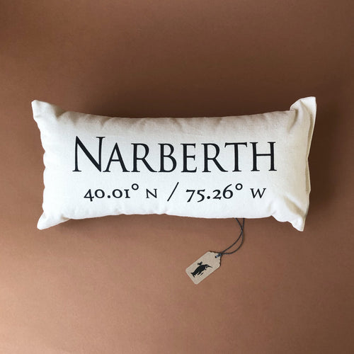 Celebrating Community Pillow | Narberth - Pillows - pucciManuli