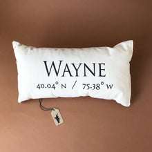 Load image into Gallery viewer, Celebrating Community Pillow | Wayne - Pillows - pucciManuli