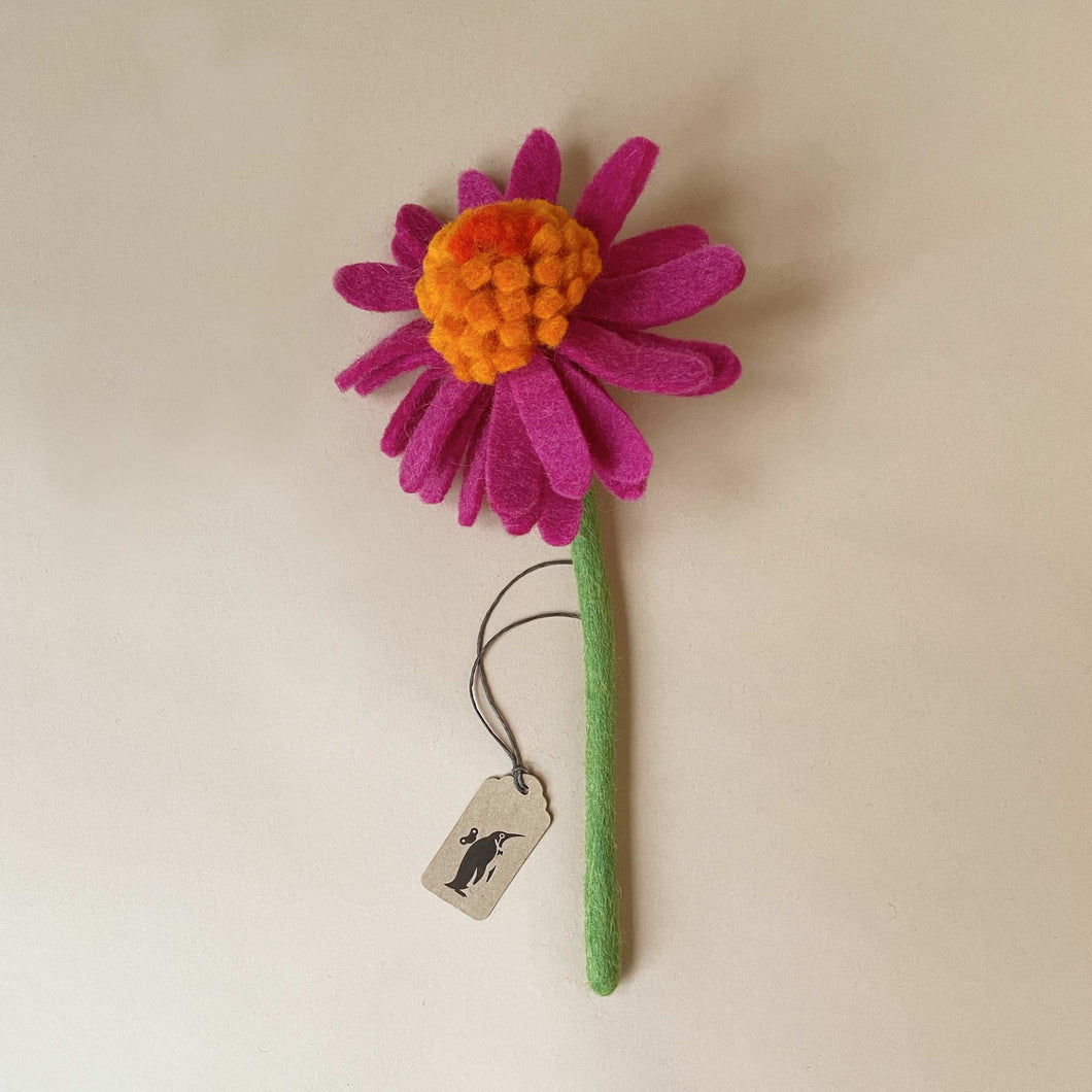 felted-cone-flower-pink-goldorange-with-light-green-stem