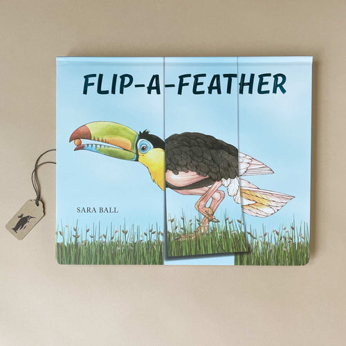 flip-a-feathe-childrens-book