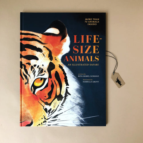 life-size-animals-book-cover-navy-blue-with-orange-tiger-face-by-Rita-Mabel-Schiavo-and-Isabella-Grott
