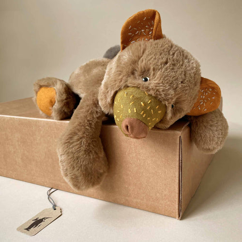 little-chanterelle-bear-laying-on-gift-box