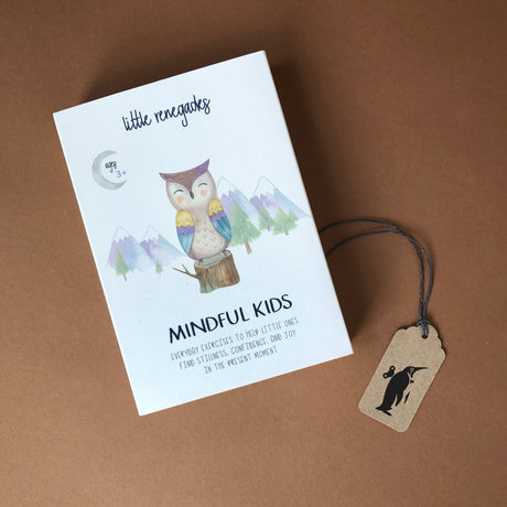 mindful-kids-card-box-with-owl-and-mountain-illustration