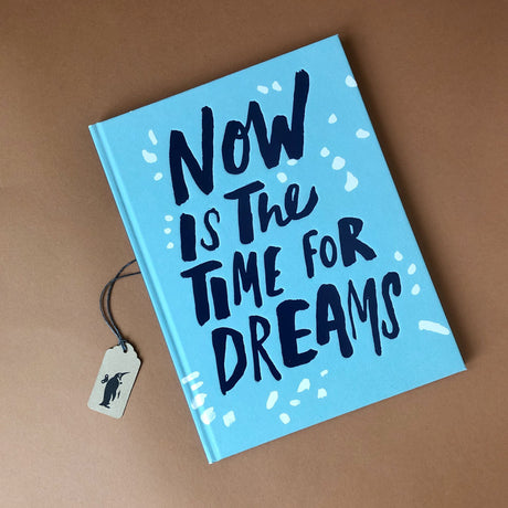 now-is-the-time-for-dreams-book-cover-blue-with-navy-title-text