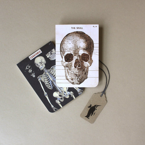 two-pocket-size-notebooks-with-vintage-anatomy-illustrations