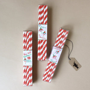Party Straws | Red Stripes - Party - pucciManuli