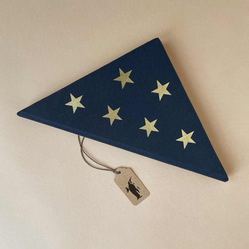 patriot-notebook-front-cover-triangular-with-gold-stars