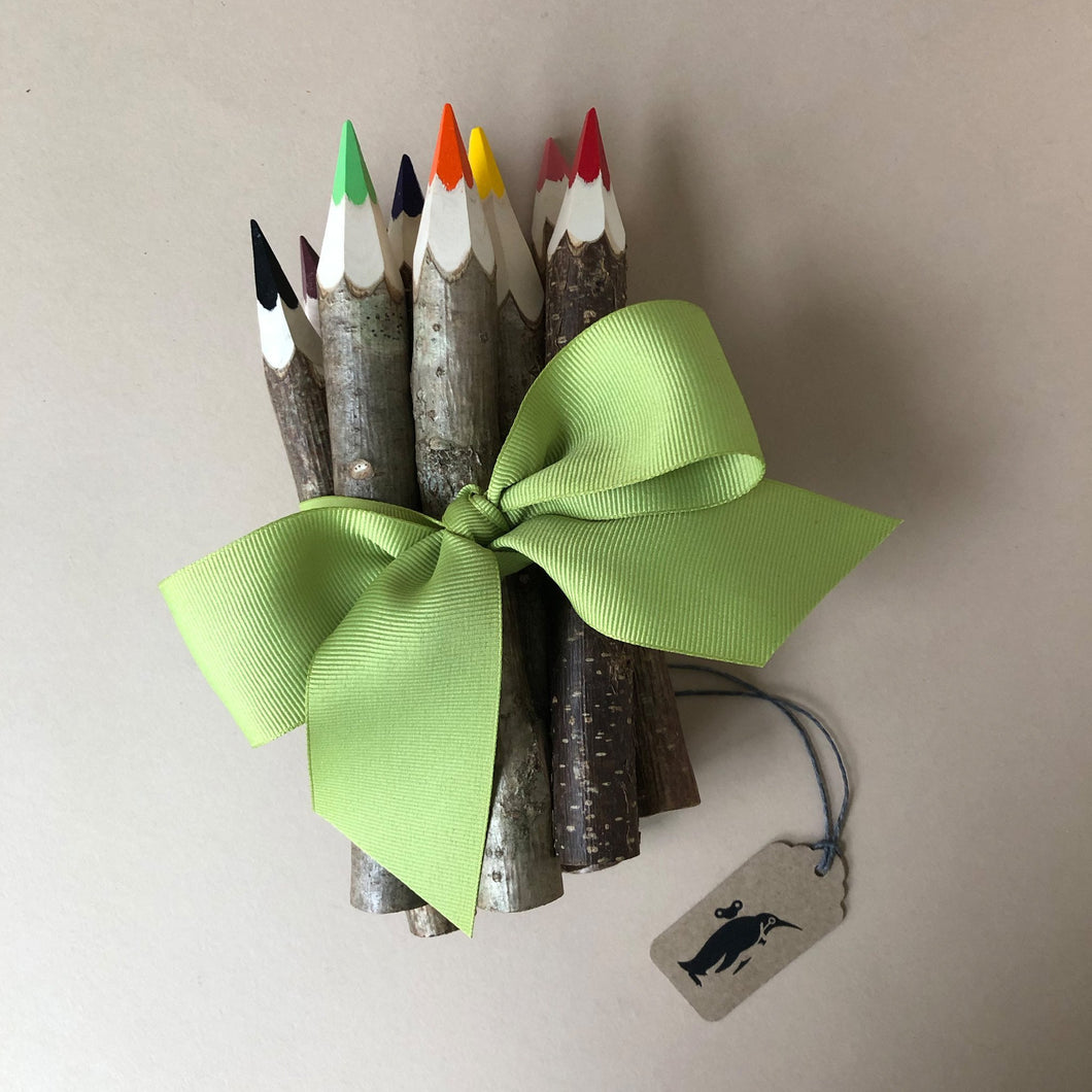 Tree Pencil Bundle (10 Colors) - Arts & Crafts - pucciManuli