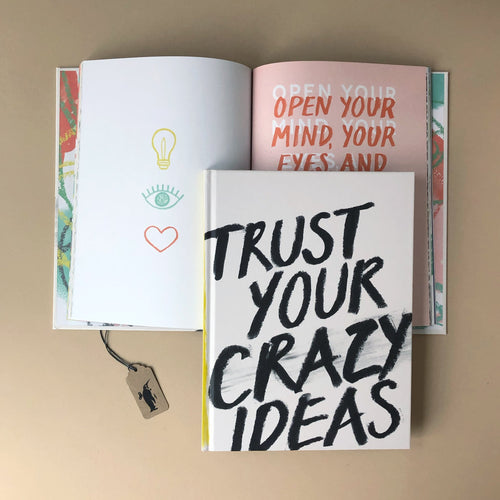trust-your-crazy-ideas-book-cover-written-with-black-text-and-inside-pages-showing-illustrations-and-inspirational-text