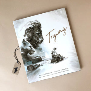 trying-book-written-by-kobi-yamada-and-illustrated-by-elise-hurst-with-lion -illustration