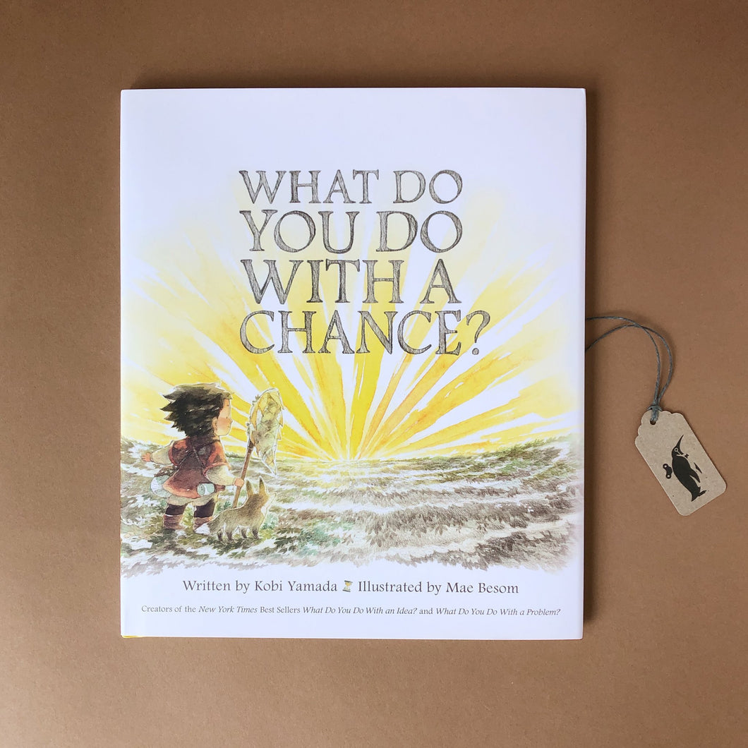 What Do You Do With a Chance? Book - Books (Children's) - pucciManuli