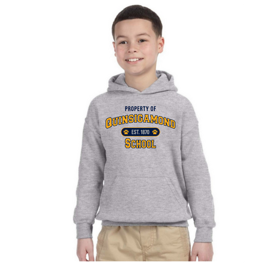 QCC- G185b  Sports Grey YOUTH  hooded sweatshirt