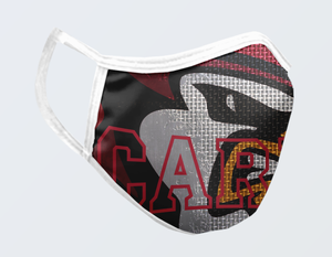 CARDINALS FACE MASK