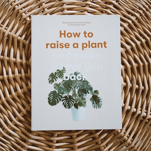 how-to-raise-a-plant-and-make-it-love-you-back