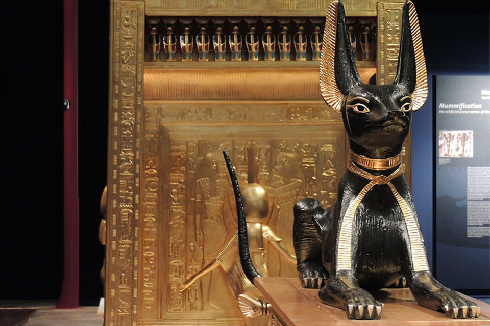 Ancient Egypt's Cat Obsession