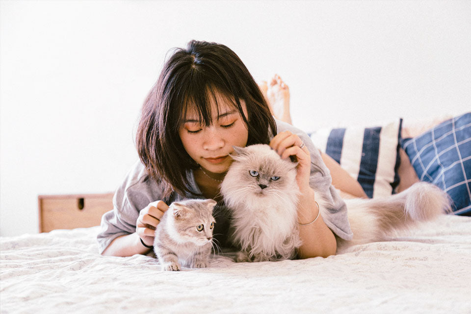How Your Cat is Keeping You Happier & Healthier