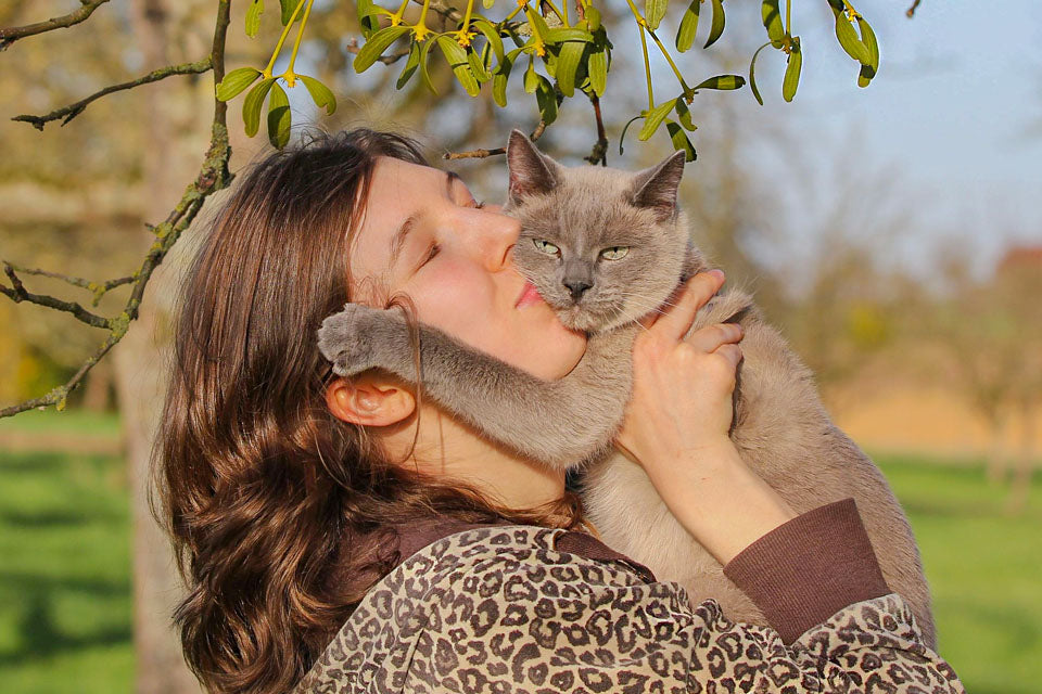 5 Hilarious Ways Cats Show That They Love Us