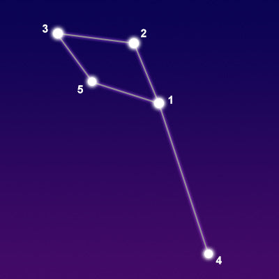 Delphinus - Dolphin Star Constellation