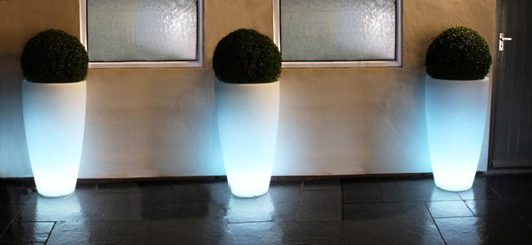 Curved Light Planter