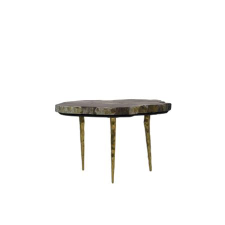 Knoxville Modern Short Petrified Wood Coffee Table