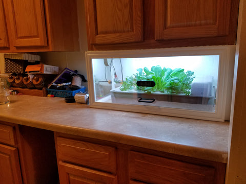 Salad Box Custom Enclosure