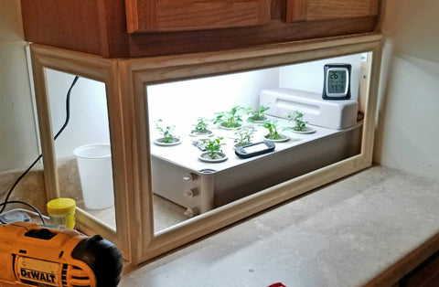 Salad Box frame