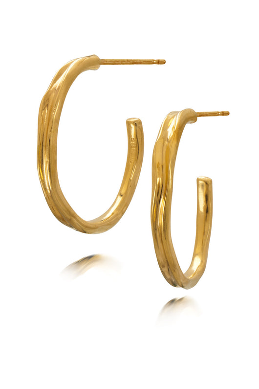Gold Vermeil Hoop Earrings: sold out