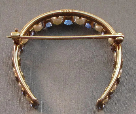 Lucky horseshoe brooch