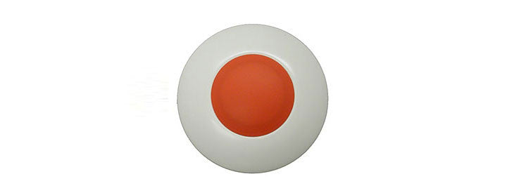 Visonic MCT-220 PERS Wireless Emergency Button