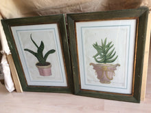 Pair of antique Hand Colored Engravings by Johann Wilhelm